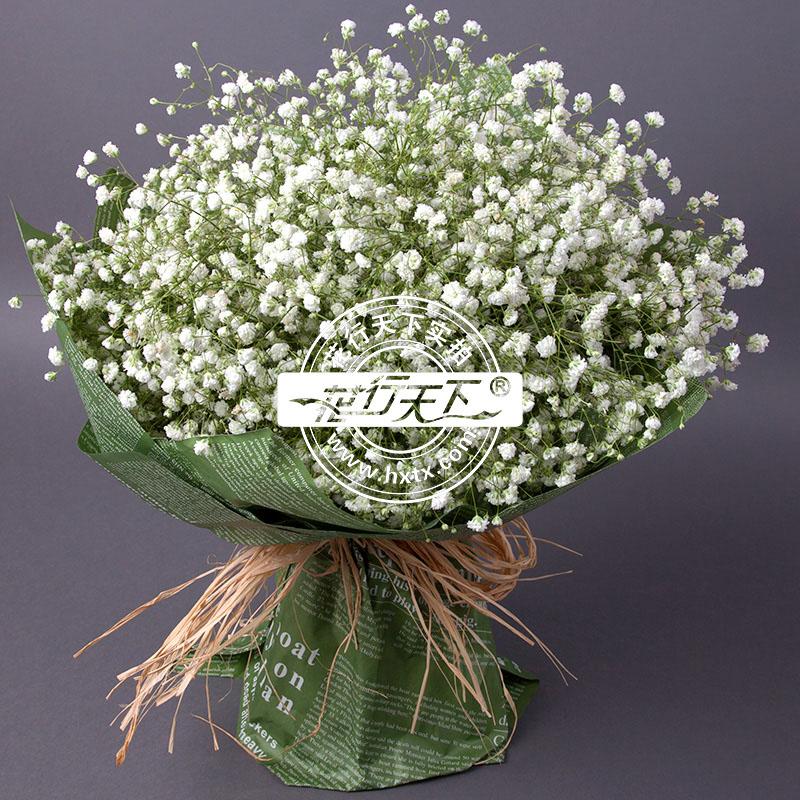 满天星花束,直径约40cm               [包 装]:绿色包装,圆形花束